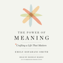 The Power of Meaning Cover