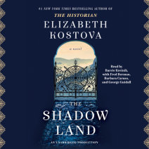 The Shadow Land Cover