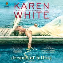 Dreams of Falling Cover
