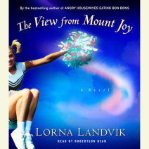 The View from Mount Joy Cover