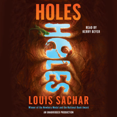 Holes cover