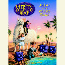 Journey to the Volcano Palace: The Secrets of Droon Book 2 Cover