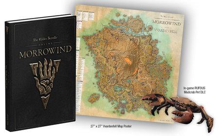 The Elder Scrolls Online: Morrowind by David Hodgson and Michael Owen