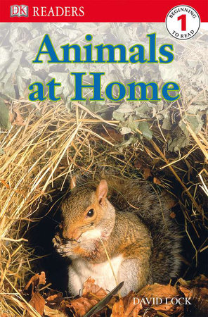 DK Readers L1: Animals at Home by David Lock
