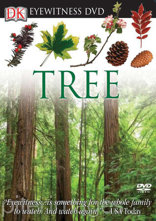 Eyewitness DVD: Tree by DK