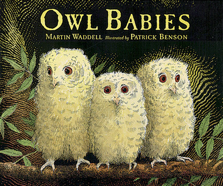 Owl Babies Big Book