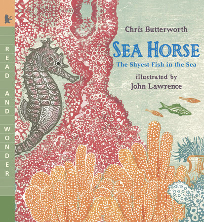 Sea Horse by Chris Butterworth
