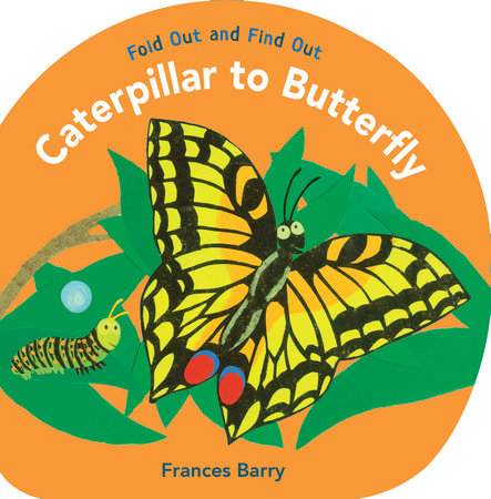 Caterpillar to Butterfly: Fold Out and Find Out
