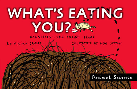 What's Eating You? by Nicola Davies
