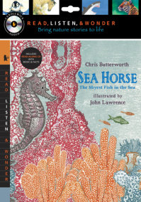 Sea Horse with Audio, Peggable