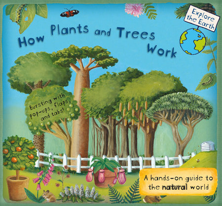 How Plants and Trees Work by Christiane Dorion