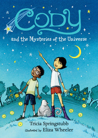 Cody and the Mysteries of the Universe by Tricia Springstubb
