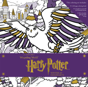 Harry Potter: Winter at Hogwarts: A Magical Coloring Set
