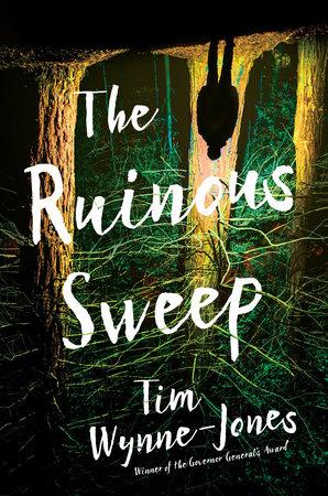 The Ruinous Sweep by Tim Wynne-Jones