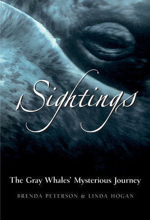Sightings by Linda Hogan and Brenda Peterson