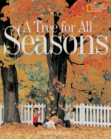 A Tree for All Seasons by Robin Bernard