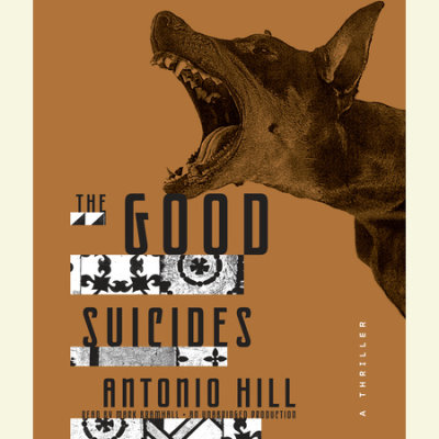 The Good Suicides cover