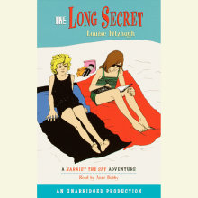 The Long Secret Cover