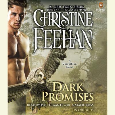 Dark Promises cover