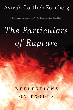 The Particulars of Rapture by Avivah Gottlieb Zornberg