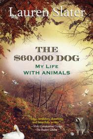 The $60,000 Dog