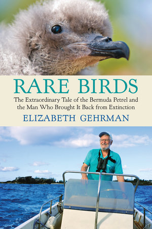 Rare Birds by Elizabeth Gehrman