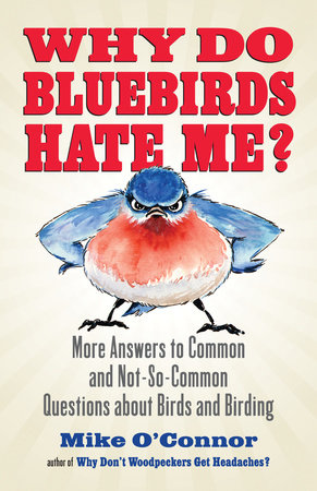 Why Do Bluebirds Hate Me? by Mike O'Connor