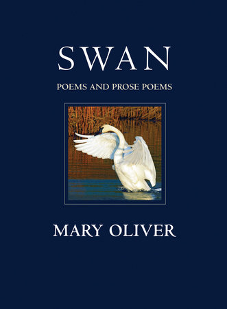 The cover of the book Swan