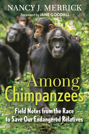 Among Chimpanzees by Nancy J. Merrick
