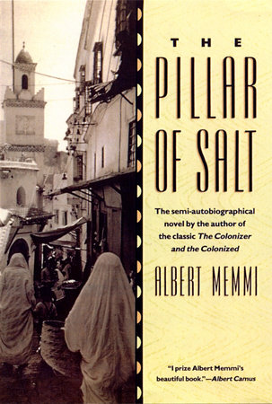 The Pillar of Salt Book Cover Picture