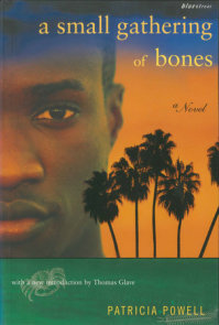 A Small Gathering of Bones