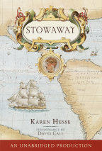 Stowaway Cover
