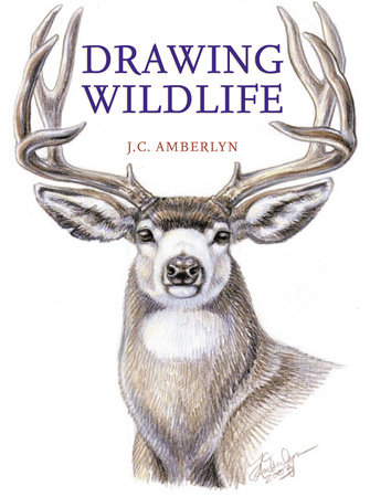 Drawing Wildlife by J.C. Amberlyn
