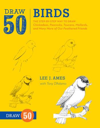 Draw 50 Birds by Lee J. Ames and Tony D'Adamo