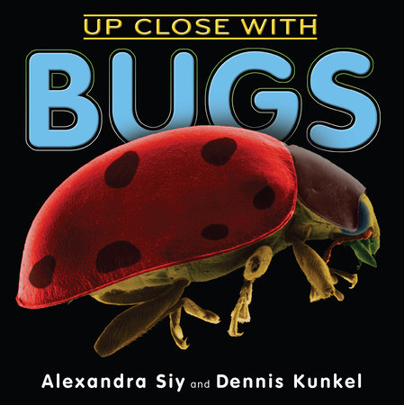 Up Close With Bugs by Alexandra Siy
