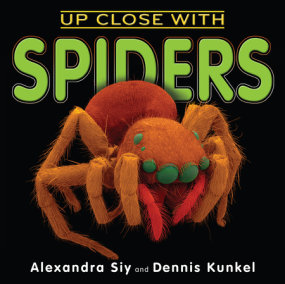 Up Close With Spiders