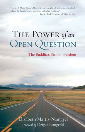 The Power of an Open Question by Elizabeth Mattis Namgyel
