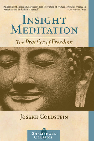 Insight Meditation by Joseph Goldstein