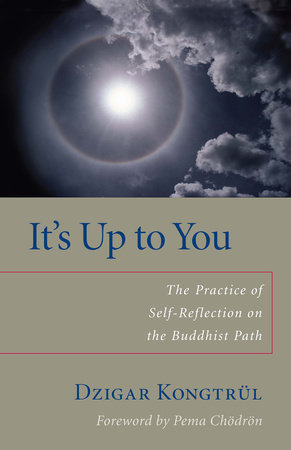 It's Up to You by Dzigar Kongtrul and Helen Berliner