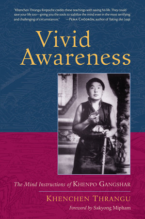 Vivid Awareness by Khenchen Thrangu