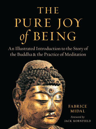 The Pure Joy of Being by Fabrice Midal