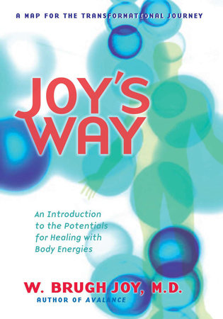 Joy's Way, a Map for the Transformational Journey by W. Brugh Joy