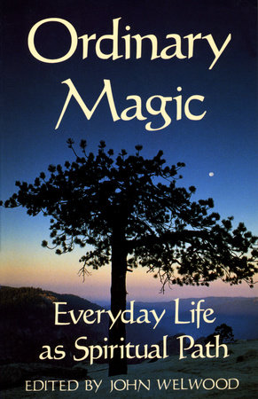 Ordinary Magic by John Welwood