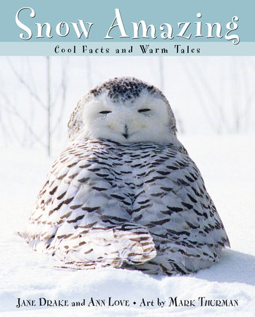 Snow Amazing by Jane Drake and Ann Love
