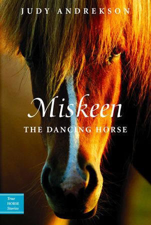 Miskeen by Judy Andrekson