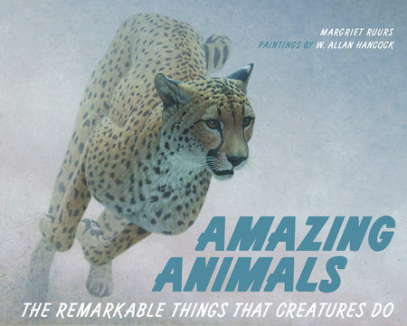 Amazing Animals by Margriet Ruurs