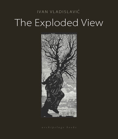 The Exploded View by Ivan Vladislavic