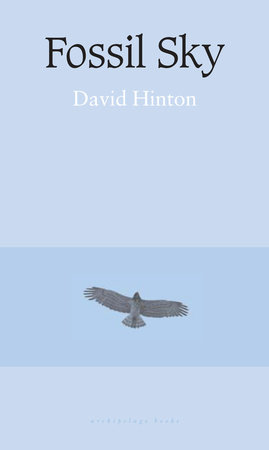 Fossil Sky by David Hinton