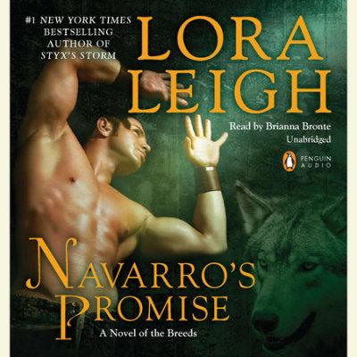 Navarro's Promise cover