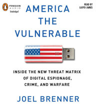 America the Vulnerable Cover